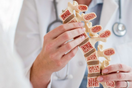 Imagem: Profissional de saúde cujo rosto não aparece segura um simulacro de medula óssea (Imagem: Science Photo Library)