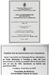 Imagem: Para homenagear a pesquisa histórica foi descerrada uma placa de registro do local de descoberta da toxina STa da Escherichia coli (Foto: Divulgação)