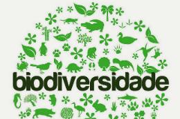 """Imagem: A palavra """"biodiversidade"""" entre ícones da natureza"""