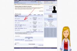 Imagem: tela do tutorial em vídeo