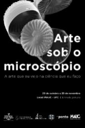Imagem: Na exposição, o público poderá conferir 32 fotografias captadas por técnicas de microscopia