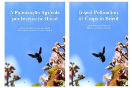 Imagem: As duas versões do livro (em inglês e português) estarão disponíveis gratuitamente para download nos sites das duas universidades (Imagem: Divulgação)
