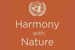Imagem: logomarca do programa Harmonia com a Natureza, do ONU