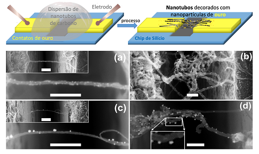 Imagem: desenho de um nanotubo de carbono e, abaixo, imagens de microscópio