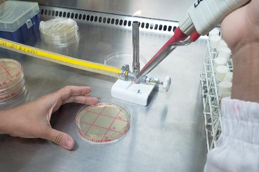 Imagem: mãos usam pipeta em laboratório